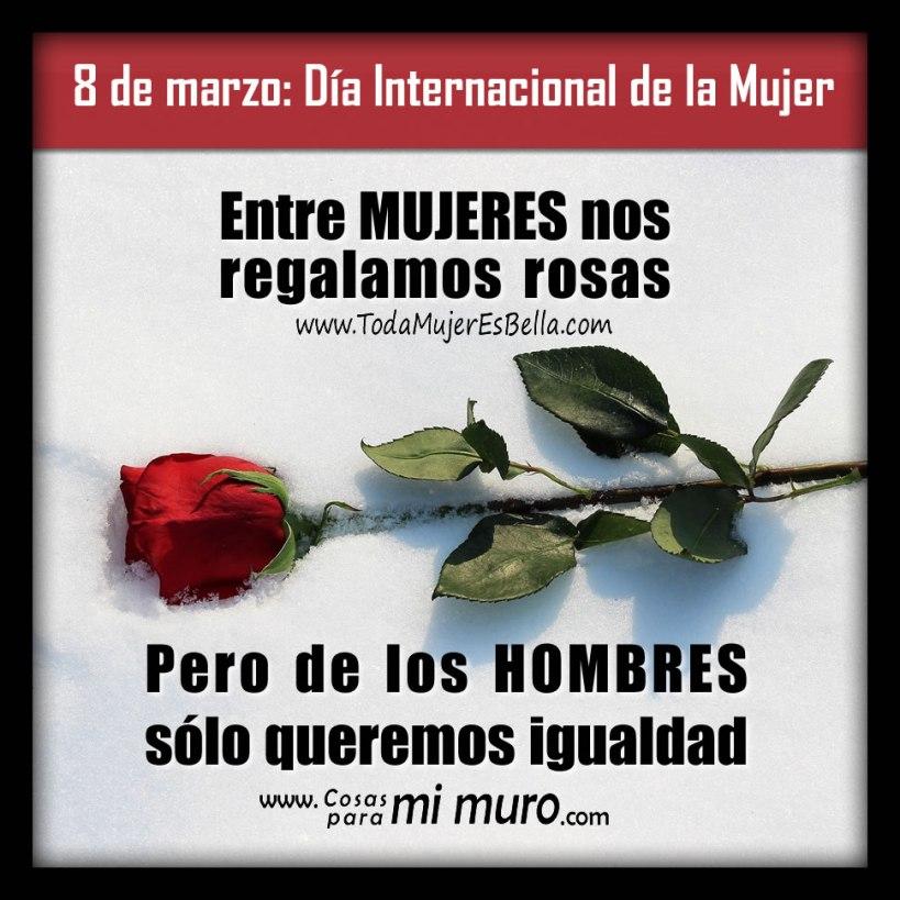 Queremos igualdad, no rosas