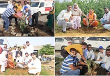 Planting craze on birthday is growing - Jaswant Pawar