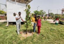 Must plant a banyan plant on the worship of Vat Savitri - Jaswant Pawar