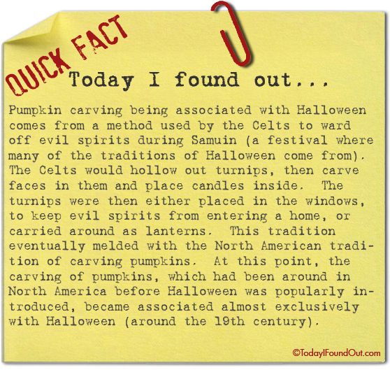 Image result for the history of pumpkins and halloween