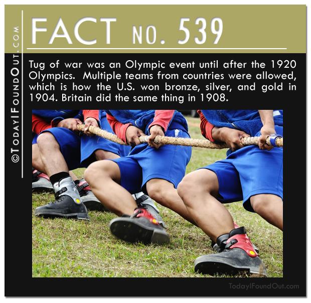 TIFO Quick Fact 539
