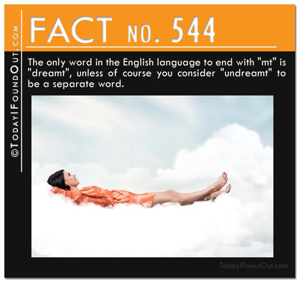 TIFO Quick Fact 544