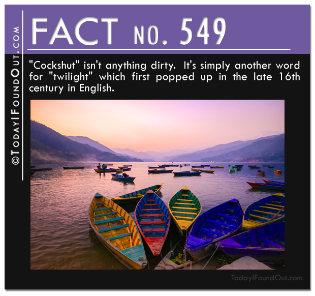 TIFO Quick Fact 549