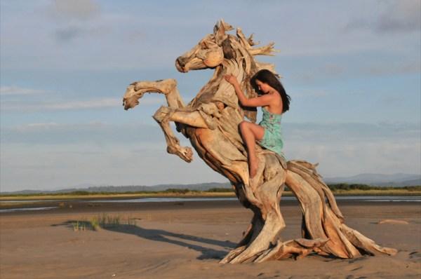 the-sea-horse-5