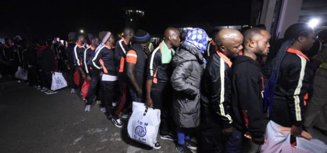 NEMA receives 160 Nigerian voluntary returnees from Libya