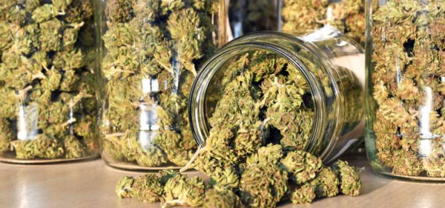 Occasional cannabis may boost men's fertility, new study suggests
