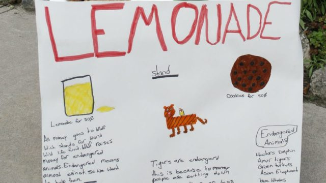 anya lemonade sign