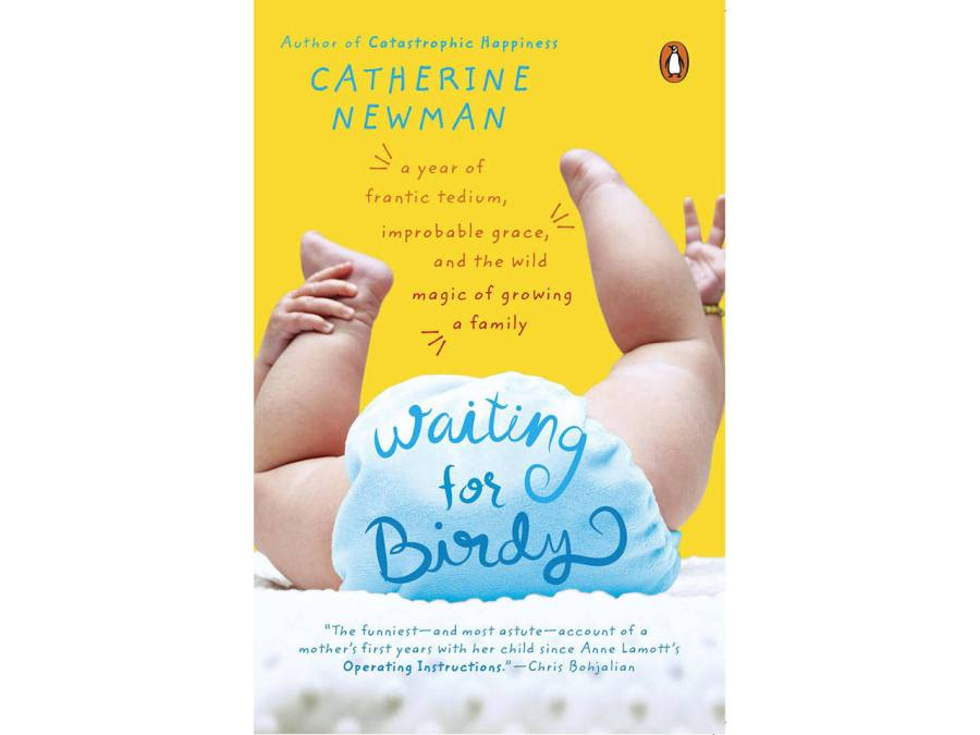 Cover of the pregnancy book Waiting for Birdy