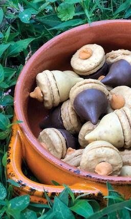 Oak Leaves & Acorns Shortbread Cookies