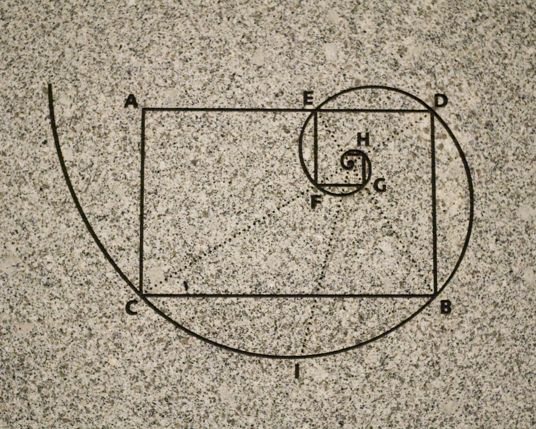 The fibonacci golden spiral. Image credit Benjamin Chan.