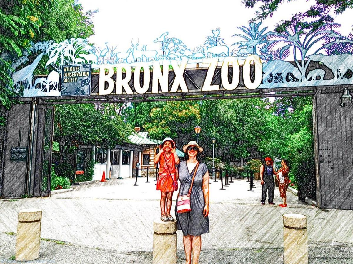 Exploring the Bronx Zoo