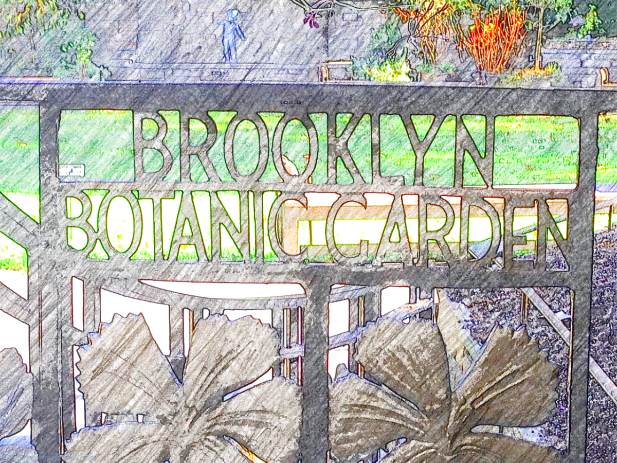 Brooklyn Botanic Gardens - new Discovery Garden for kids
