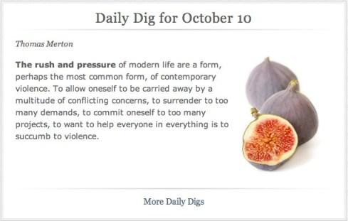 dailydig101013