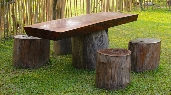 Fallen tree repurposed into table and log seats