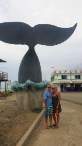 san jacinto whale tail