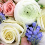 Wedding Trends This Winter Find Unusually Striking And Beautiful Winter Flowers Wedding Flowers Blog