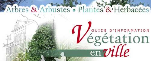Guía sobre la vegetación en las ciudades