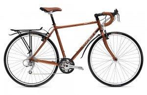 bicicleta molona