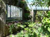 Tropical House, Allan Gardens Conservatory