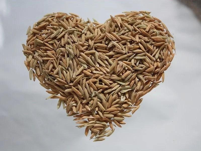 arroz 1