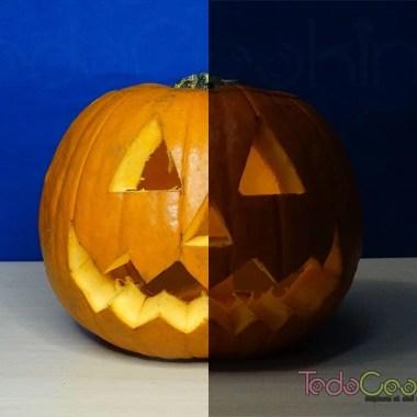 Calabaza de Halloween-04
