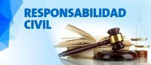 Práctica en Responsabilidad Civil
