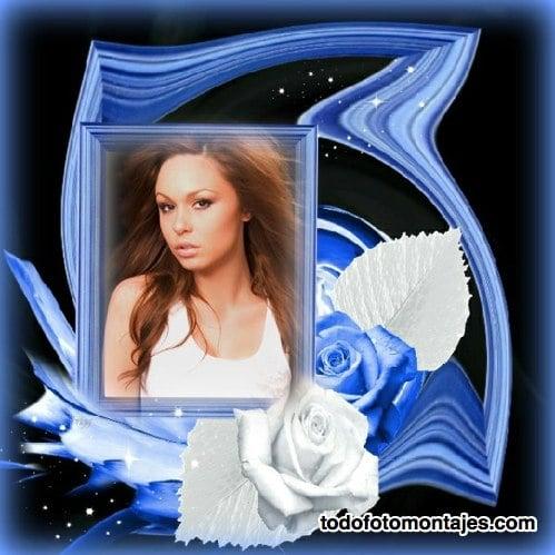 Fotomontaje Con Rosas Azules Y Blancas