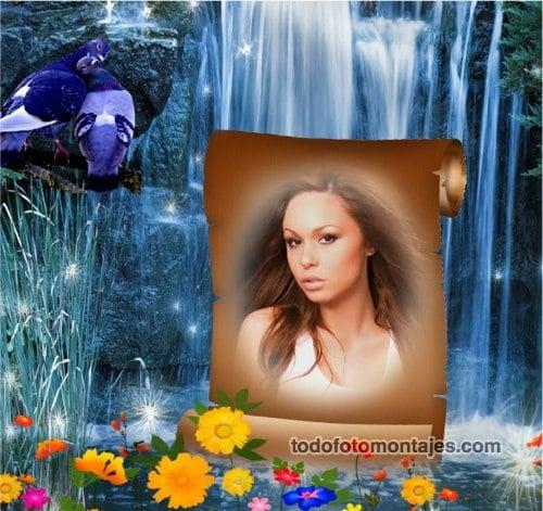 Fotomontagen Online Gratis