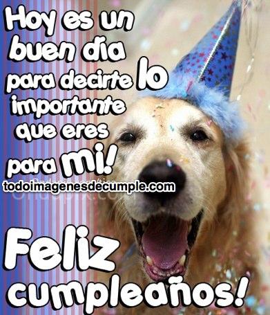 imagenes de feliz cumpleaños con frases y perrito