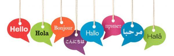 Campamento lingüístico
