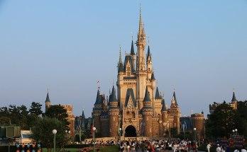 Disney Wald