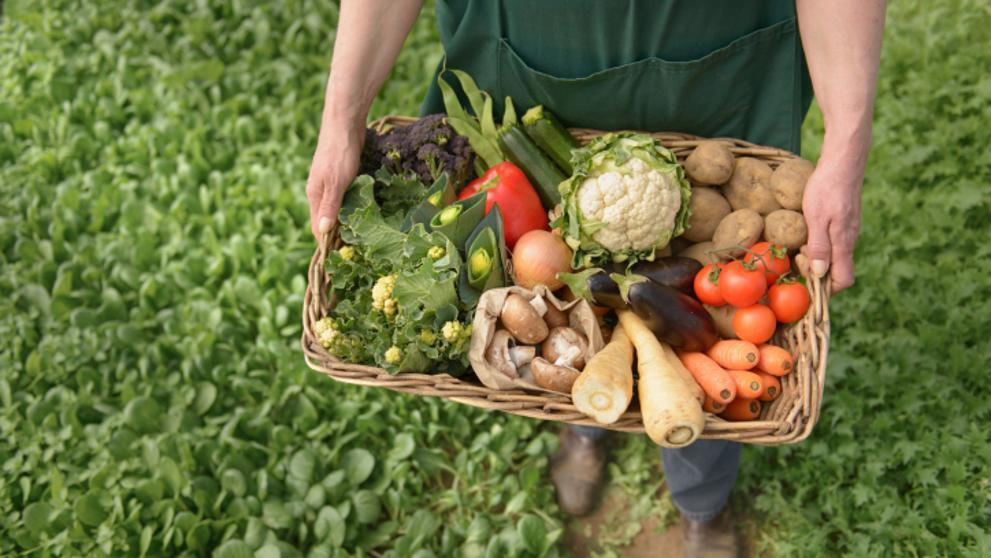 Datos curiosos sobre la agricultura en EEUU