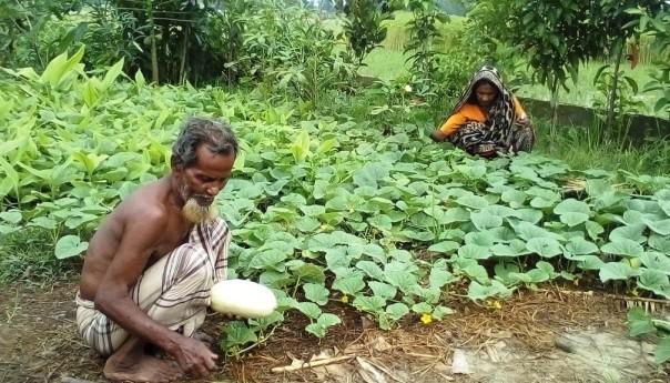 agricultura amigable con el medio ambiente