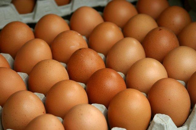 ¿Se puede saber el sexo de los pollitos cuando todavía están en el huevo?