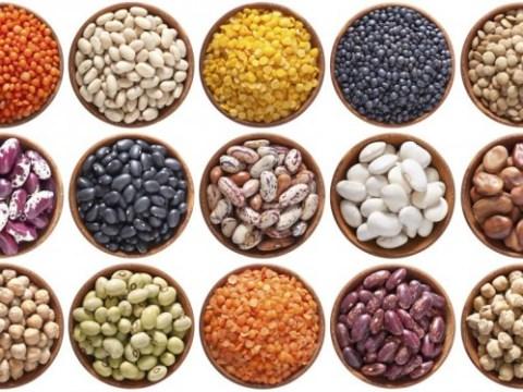 diferentes tipos de frijoles secos