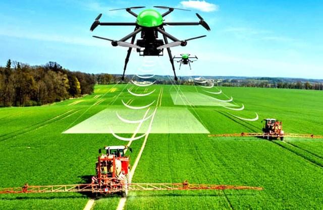 Tendencias de transformación digital en la agricultura