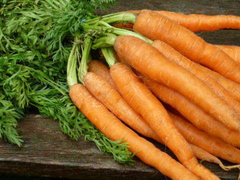 top 10 paises productores de zanahoria