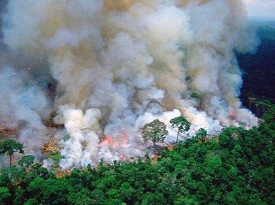 AMLO y el incendio en el Amazonas ¿planea o no ayudar?