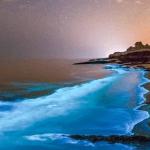 El fenómeno de las aguas Bioluminiscentes
