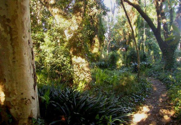 Jardín de la Quinta Vaz Ferreira