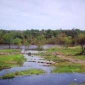Río Daymán