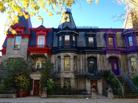 plateau mont-royal