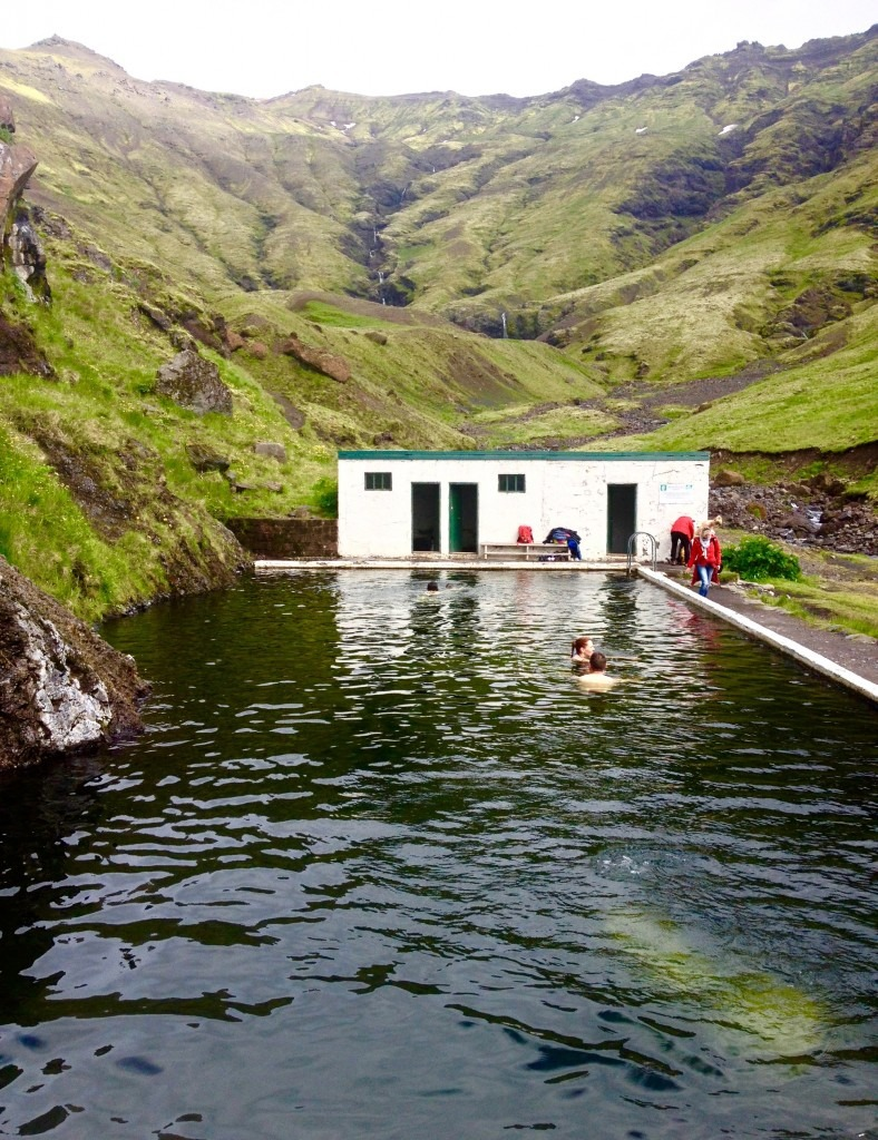 The secret pool of South Iceland, Seljavellir - The Best Day Trips From Reykjavik