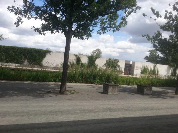 Ein See und dahinter die Mauer vom Huneplatz