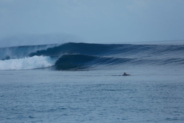 Togat Nusa Surf Retreat-35