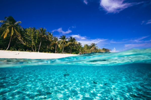 Togat Nusa Surf Retreat6