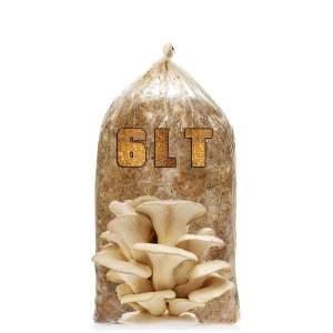 kompost-6-litre-3