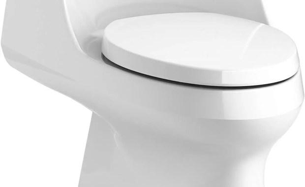 Best Kohler San Raphael Toilet Review 2019 - Toiletable.com