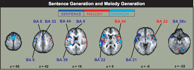 Music_and_Language_brain_areas_compare_and_contrast