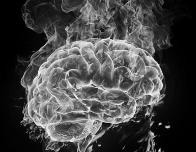 brain_rs2
